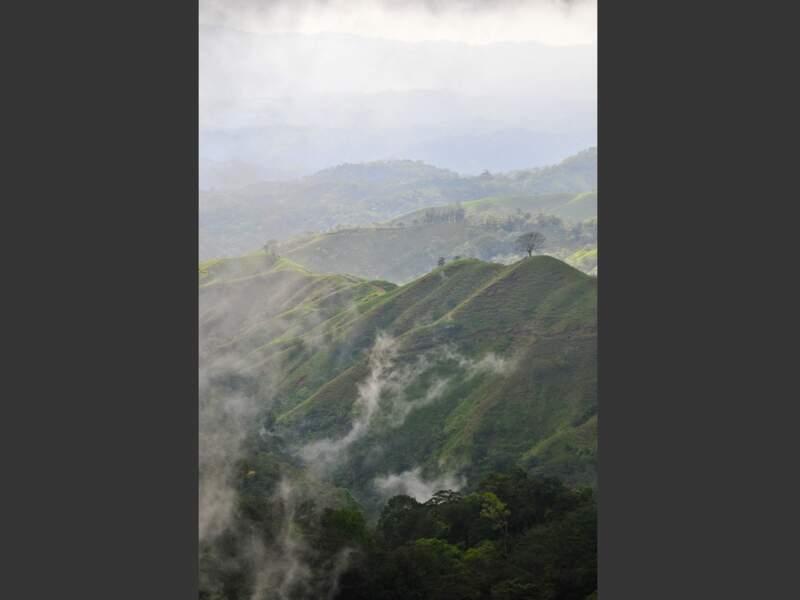 Paysage brumeux, entre les volcans Arenal et Turrialba, au Costa Rica