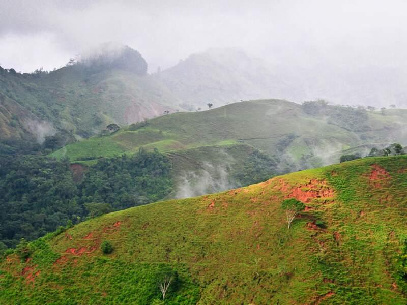 Paysage vallonné et luxuriant, au Costa Rica