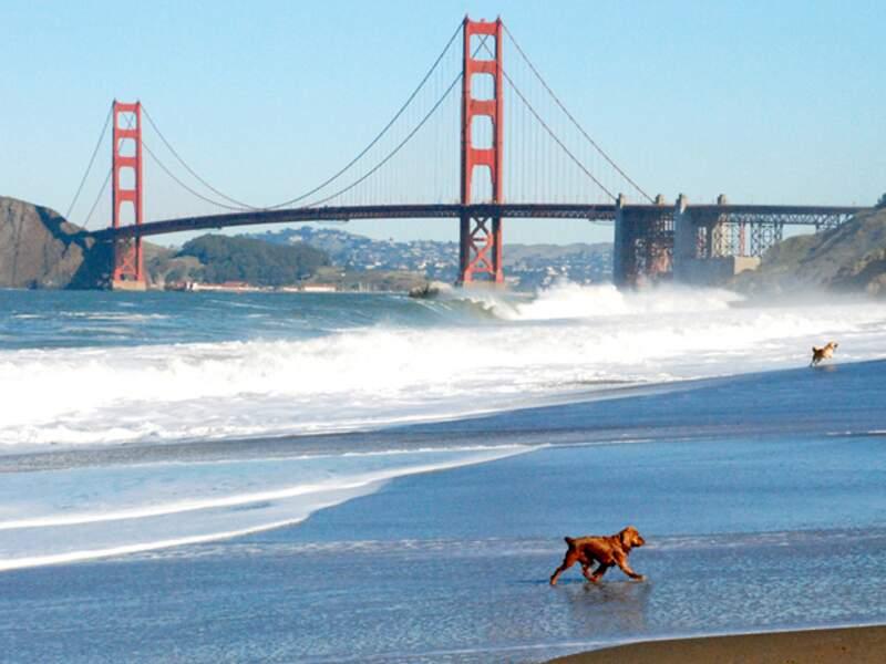 Le Golden Gate Bridge, la porte de l'or, ferme la baie de San Francisco.