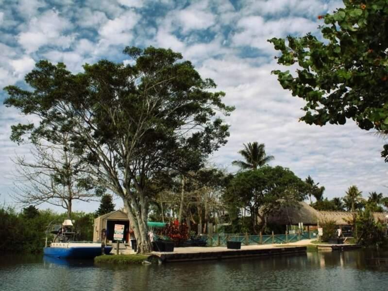 La ferme aux alligators de Homestead, en Floride, aux Etats-Unis.