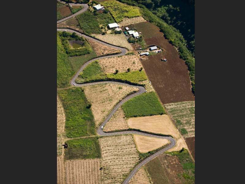 Route qui serpente sur l'île de La Réunion