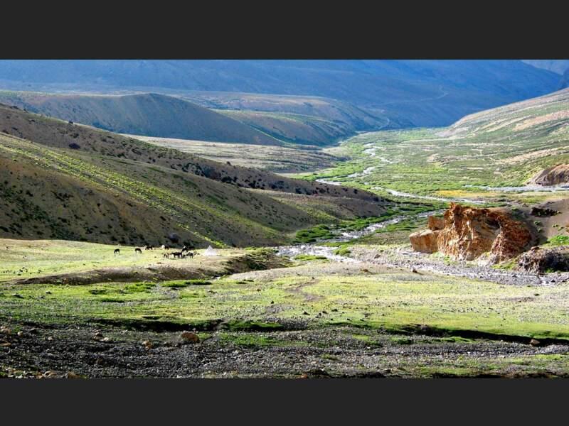Le col de Singe La (ou Shingo La), au Zanskar, en Inde