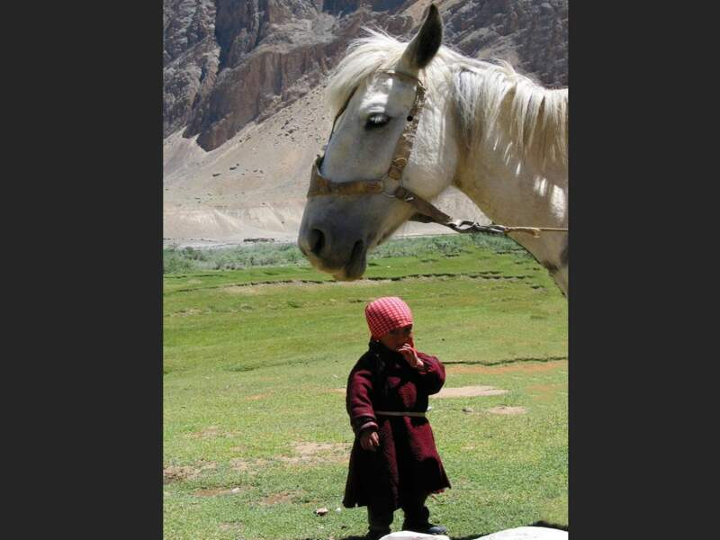 Fillette des montagnes à Pishu dans la région du Zanskar, en Inde