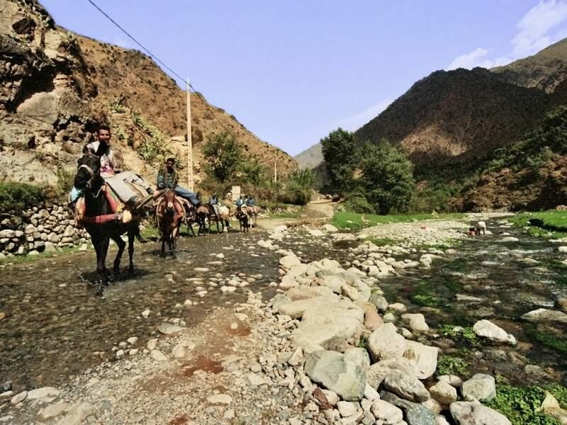 Des villageois de la vallée de l'Ourika