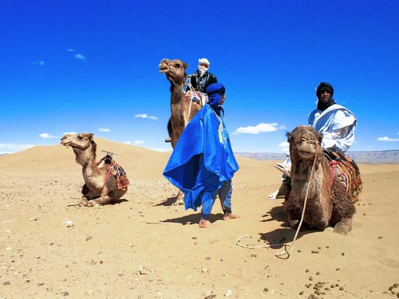 Les guerriers du désert