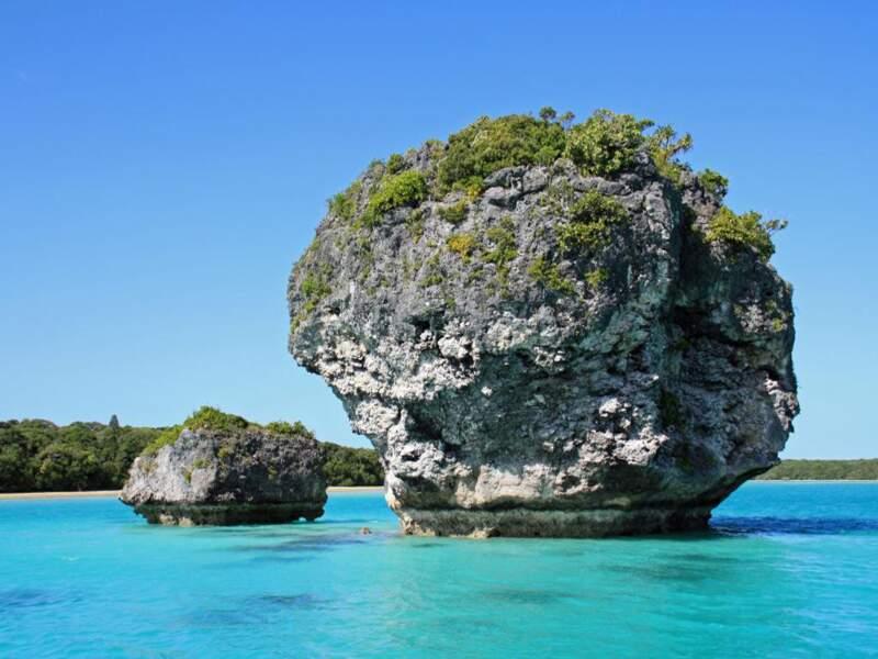 Un rocher de corail dans la baie d'Upi, sur l'île des Pins en Nouvelle-Calédonie