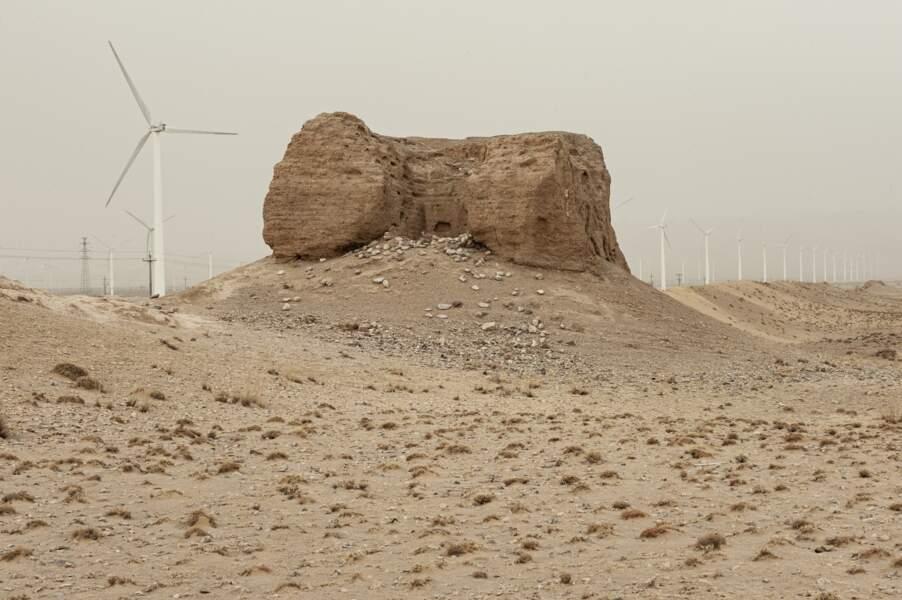 Perdue dans le désert