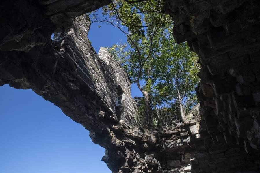 Poésie des ruines
