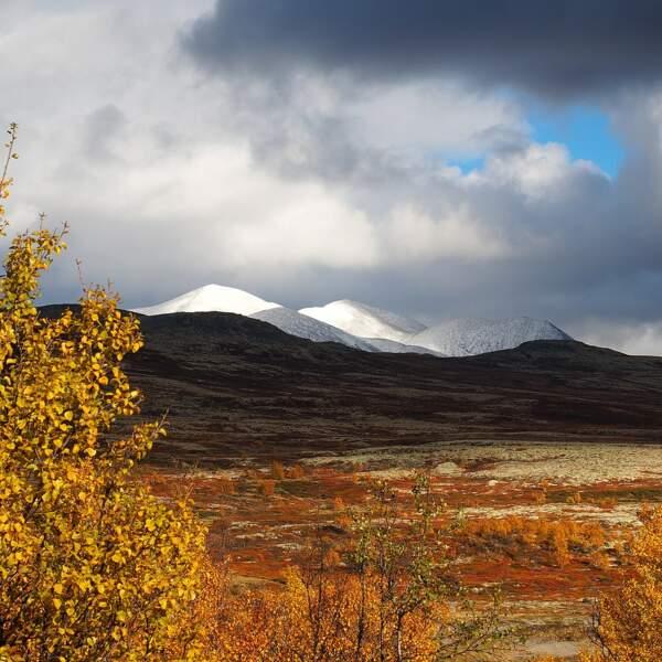 Parc national de Rondane
