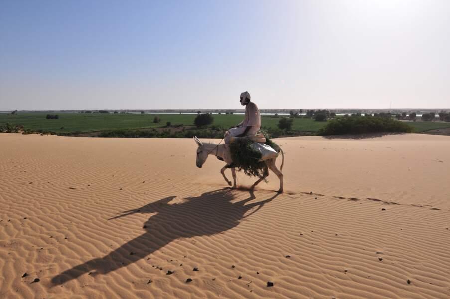 Dunes dominant la vallée du Nil