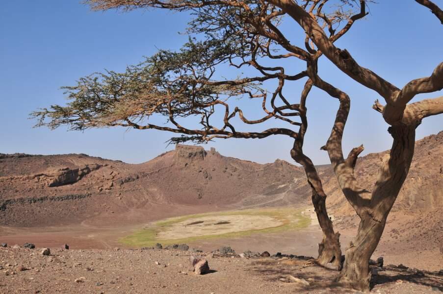 Le désert de Bayouda