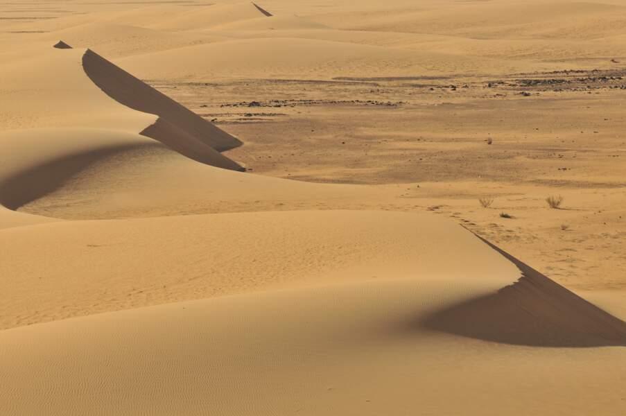 Dunes du désert de Nubie