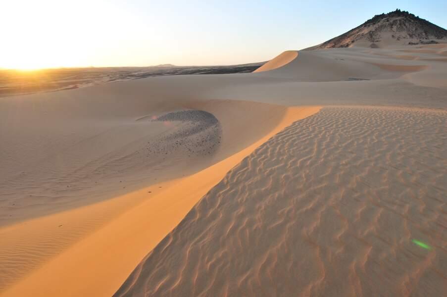 Le désert de Nubie