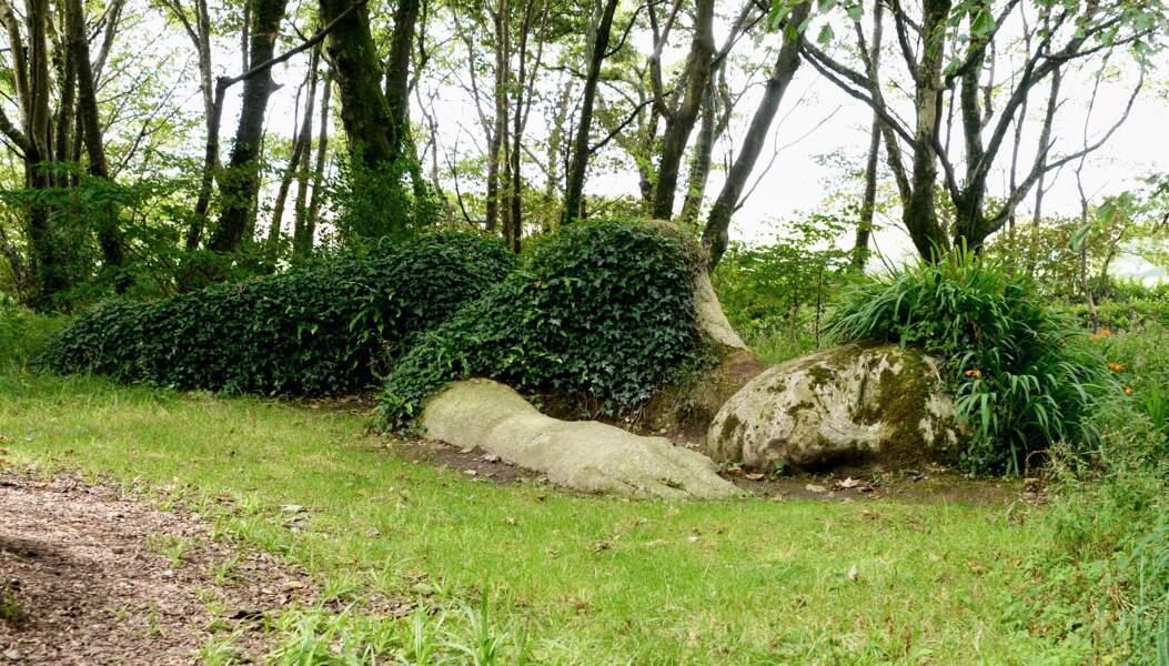 Jardins perdus de Heligan