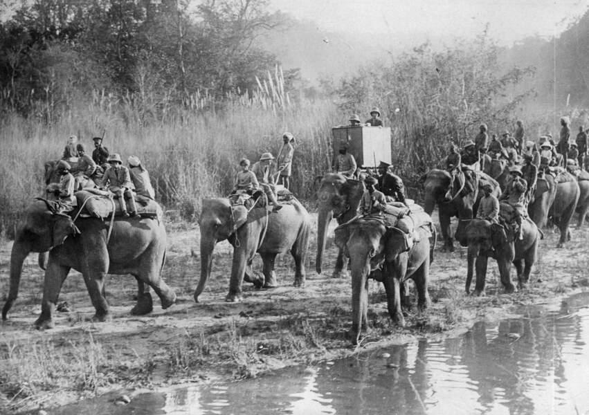 1917 : premières fissures au sein de l'Empire