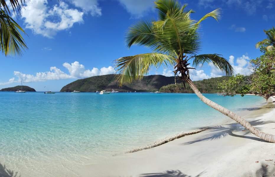 Maho Bay Beach, Îles Vierges des Etats-Unis