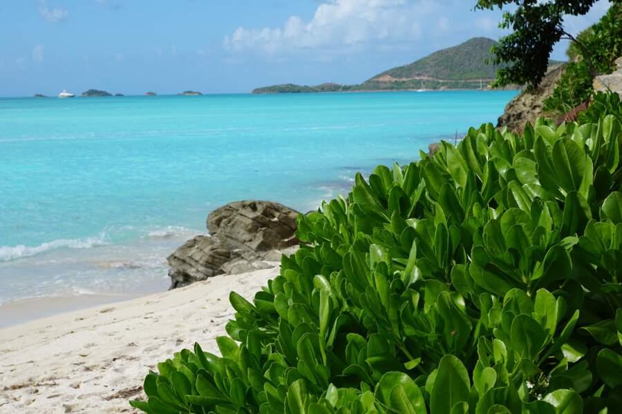 Half Moon Bay, Antigua