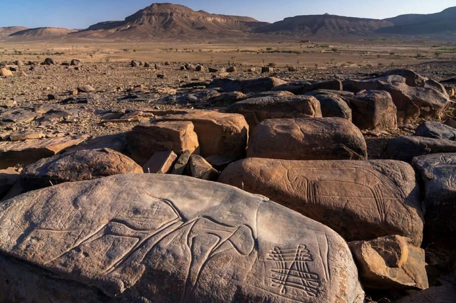 Un art rupestre, souvenir d'un Sahara vert