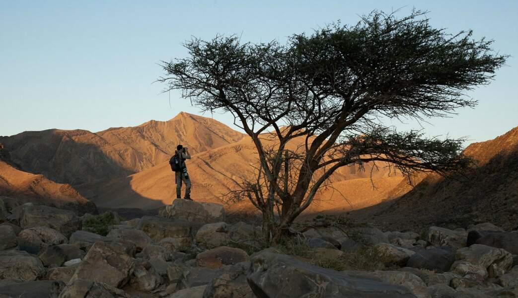 Un désert vivant