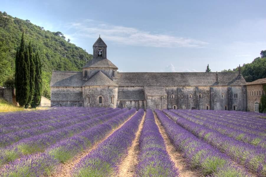 L'abbaye Notre-Dame de Sénanque