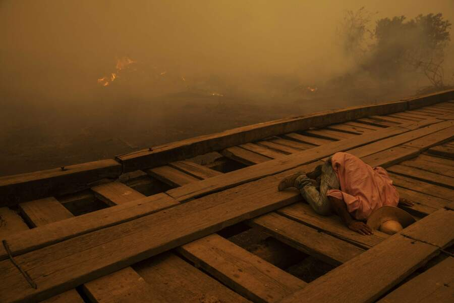 Au Brésil, dans l'enfer des flammes du Pantanal