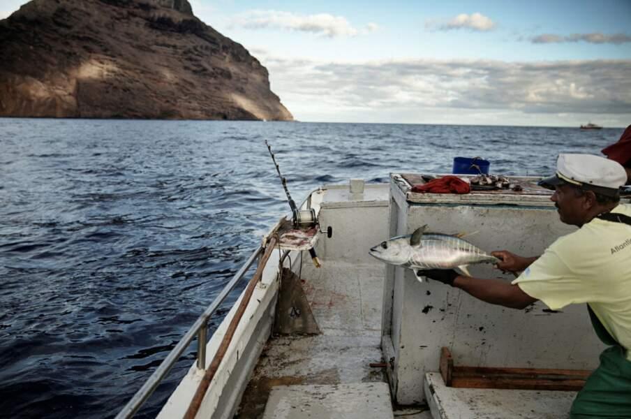 Partie de pêche...