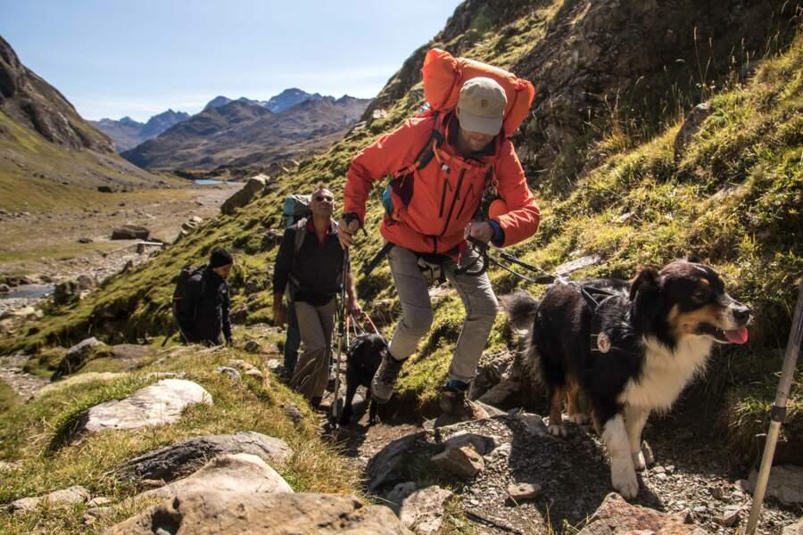 Damien Cochard : il emmène des aveugles jusqu'au sommet