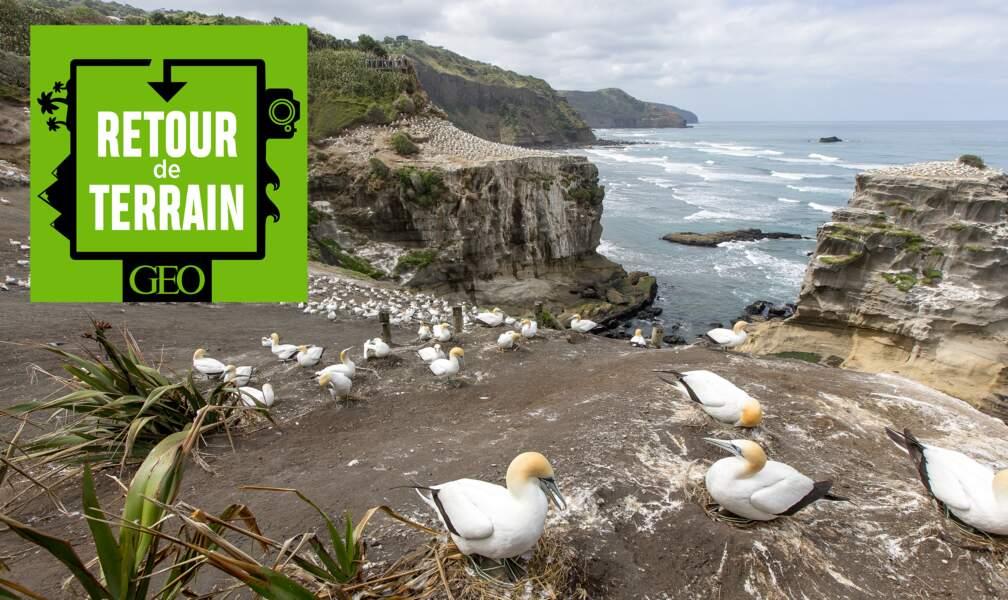 # 16 La Nouvelle-Zélande, archipel aux merveilles pour ce photographe géologue