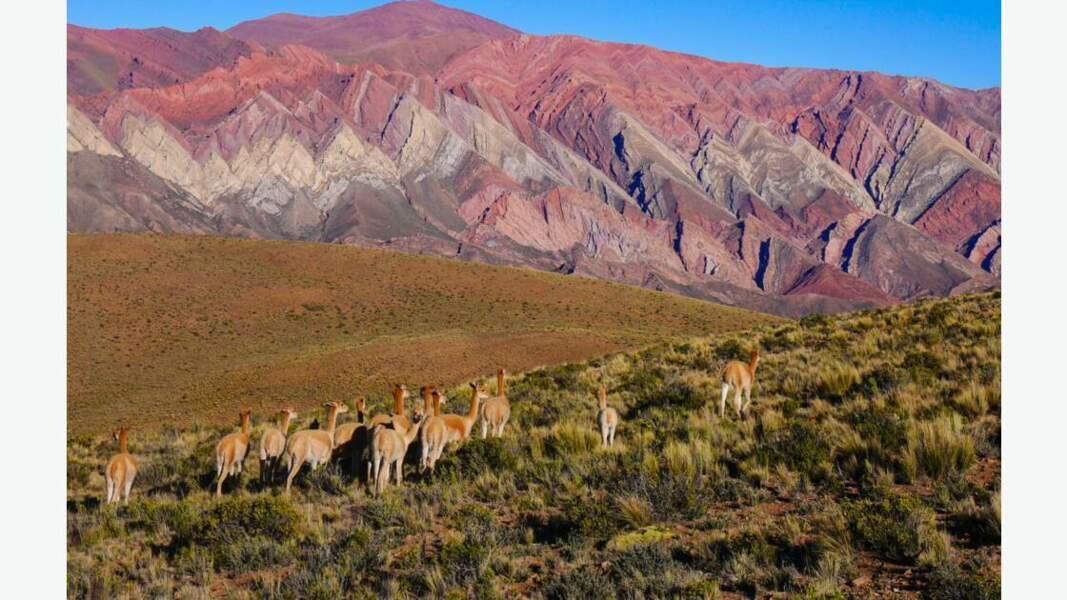 """Montagnes de Hornocal ou """"Serranias del Hornocal"""""""