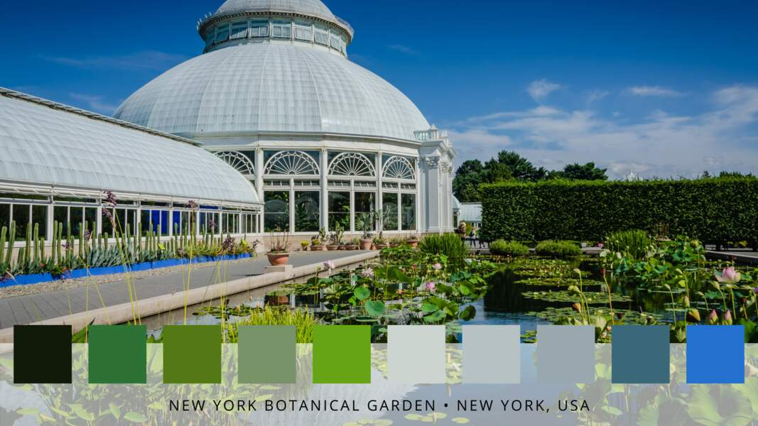 6- Les jardins botaniques de New-York