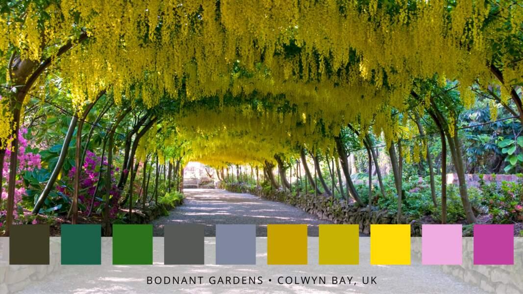 10 - Les jardins de Bodnant au Pays de Galles