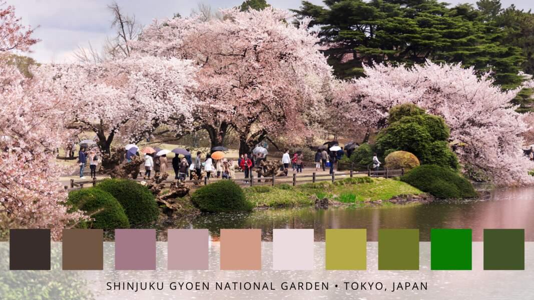 Le jardin impérial de Shinjuku situé à Tokyo