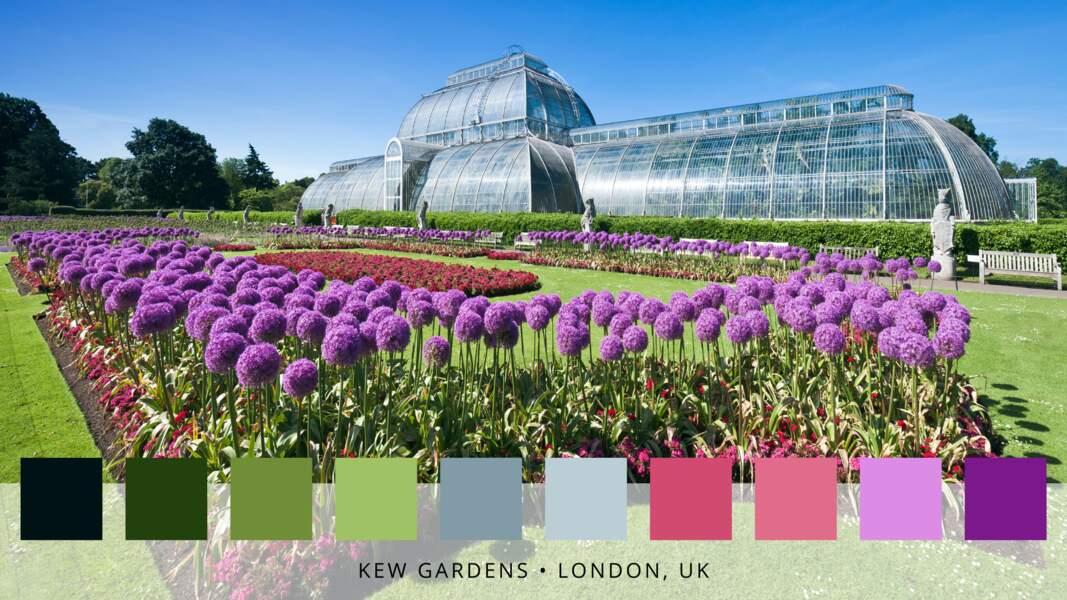 8- Les jardins botaniques royaux de Kew à Londres