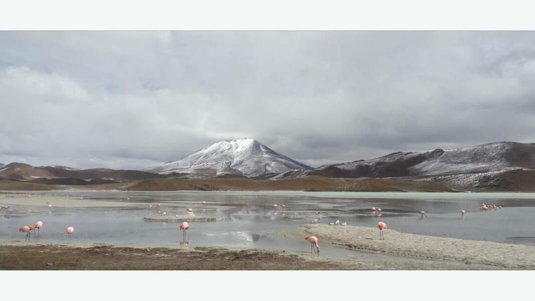 Nuances de gris au Chili