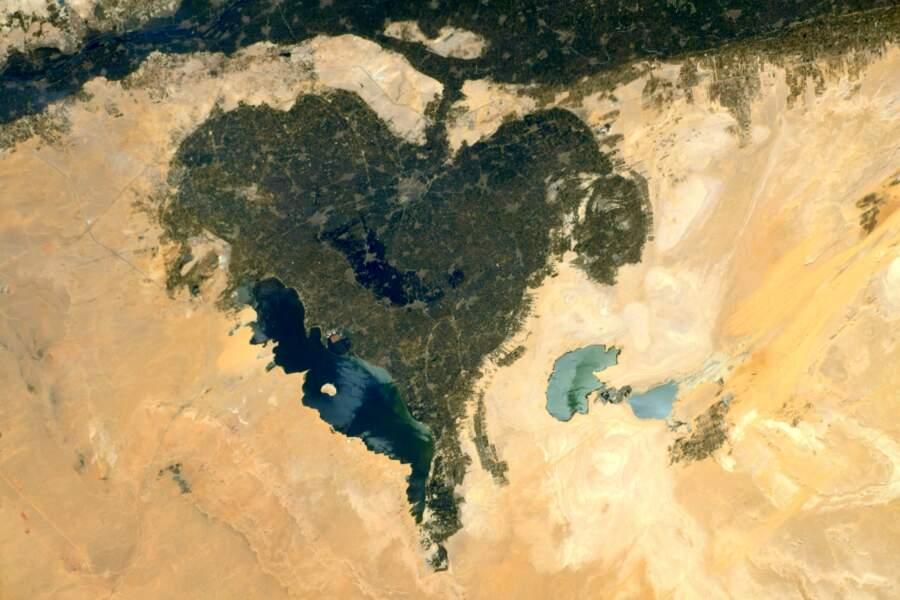 Une oasis en coeur au sud du Caire