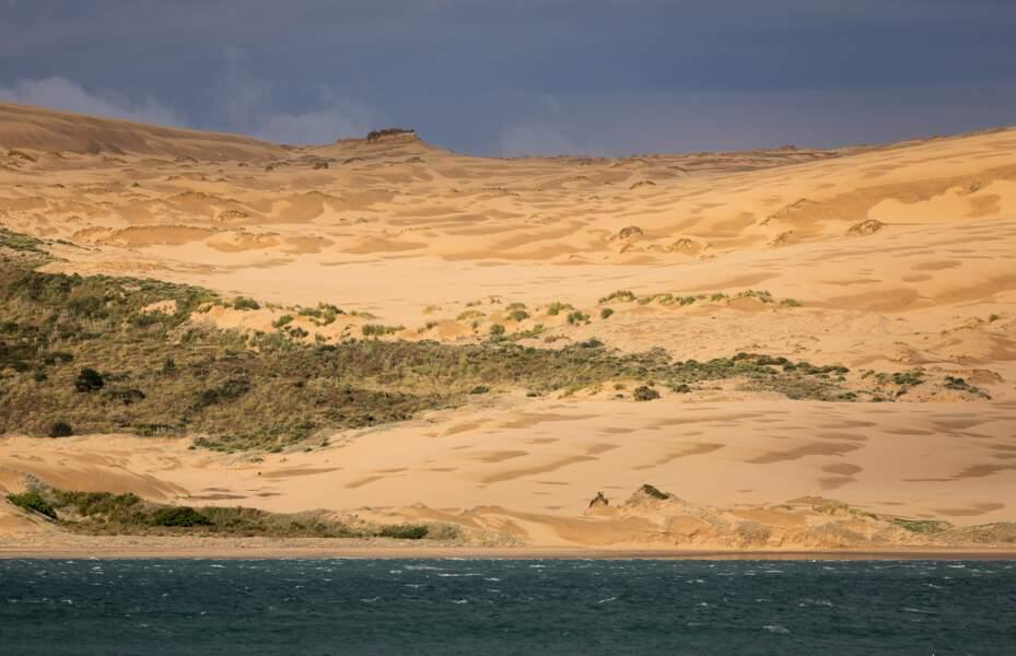 Paysage de sable