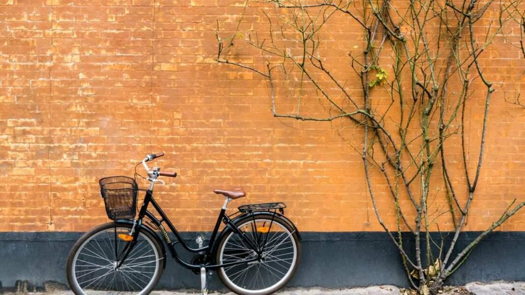 Copenhague : capitale mondiale de la bicyclette