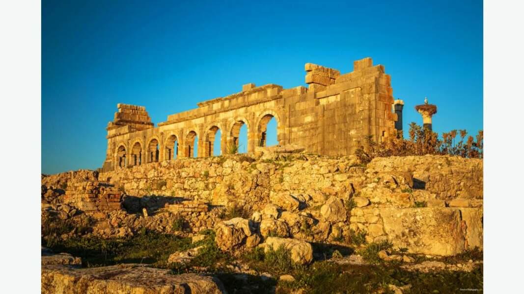 Ruines romaines de Volubilis