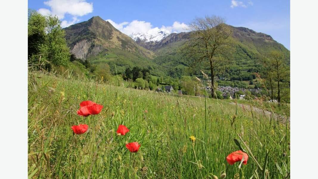 Pyrénées en vert et rouge