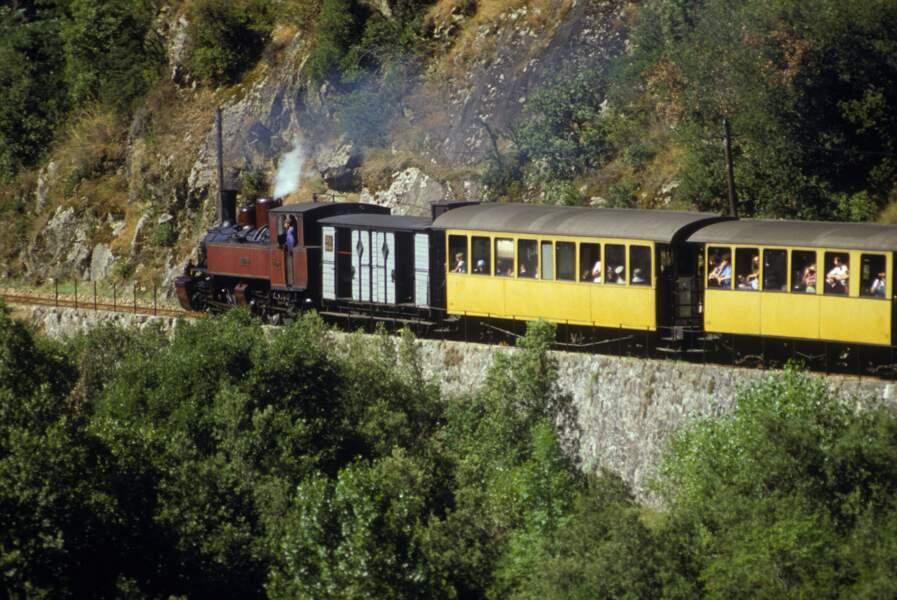 Train touristique des Chemin De Fer Du Vivarais en Ardeche