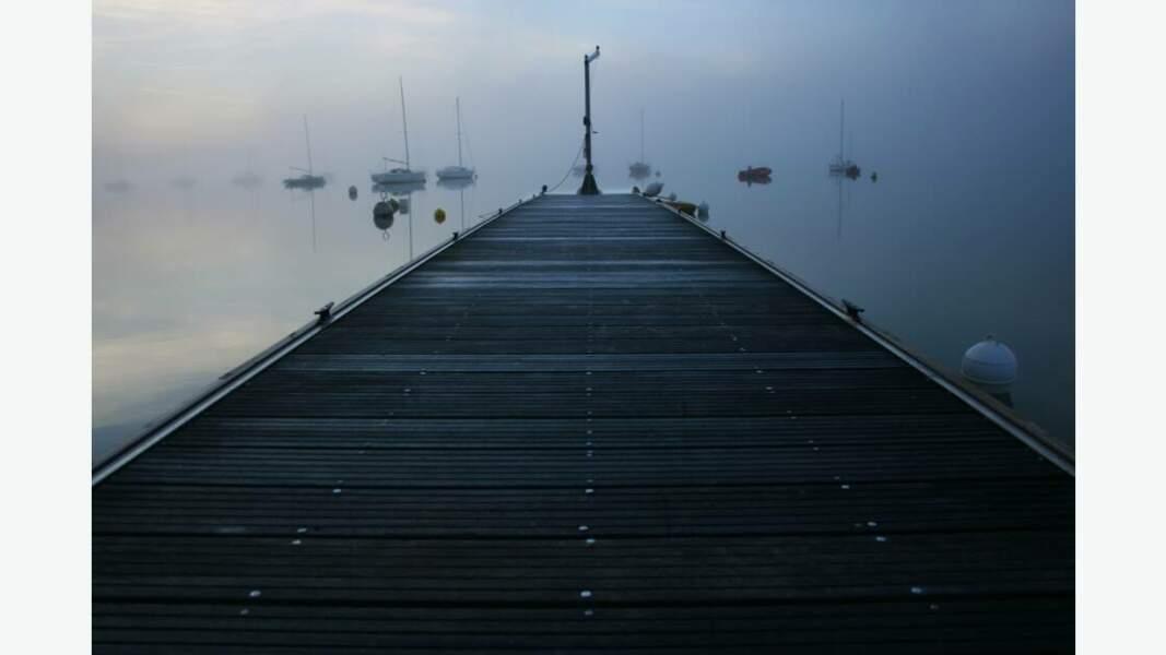 Brume sur le lac de Montbel