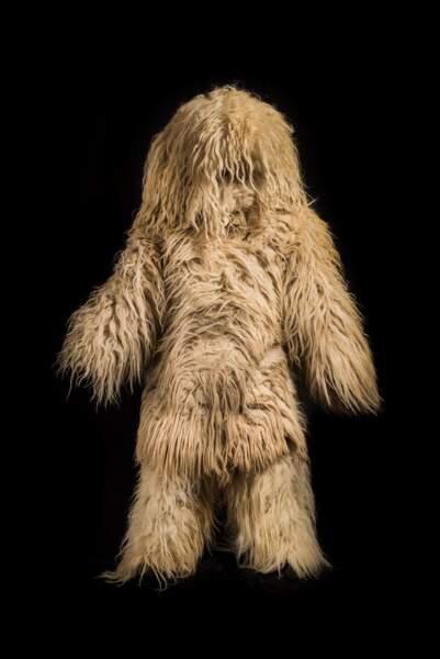 Le hartza, homme-ours revêtu de peaux de mouton