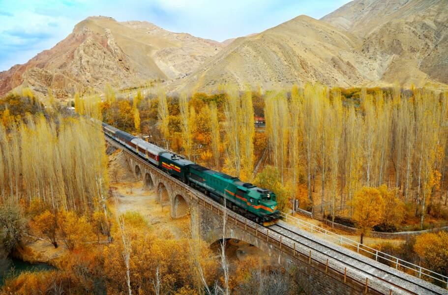 Le chemin de fer transiranien (Iran)