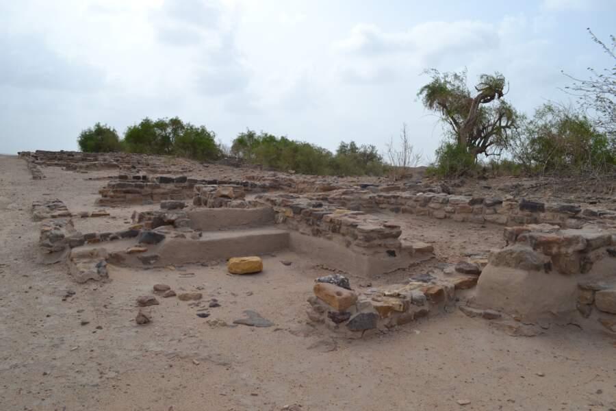 Les ruines d'une cité harappéenne à Dholavira (Inde)