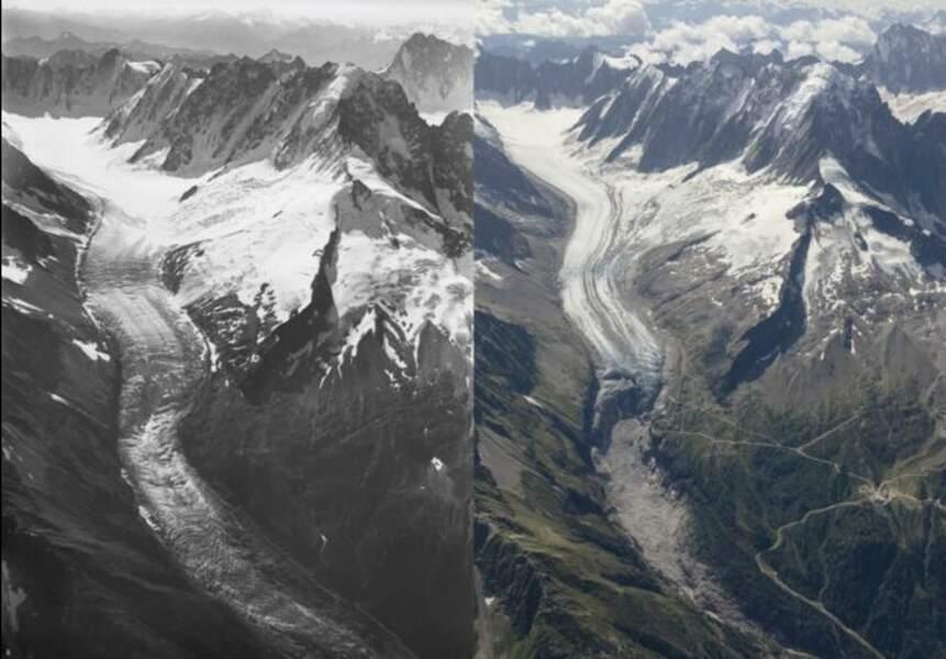 Le glacier d'Argentières entre 1919 et 2019