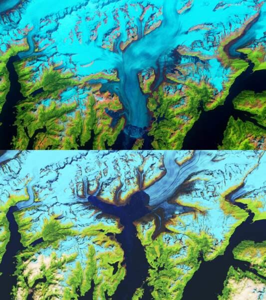 Le glacier Columbia en Alaska entre 1986 et 2019