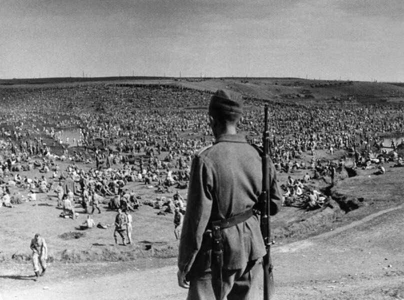 Barbarossa : la propagande à l'épreuve des faits