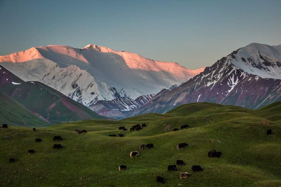 Immensité du paysage