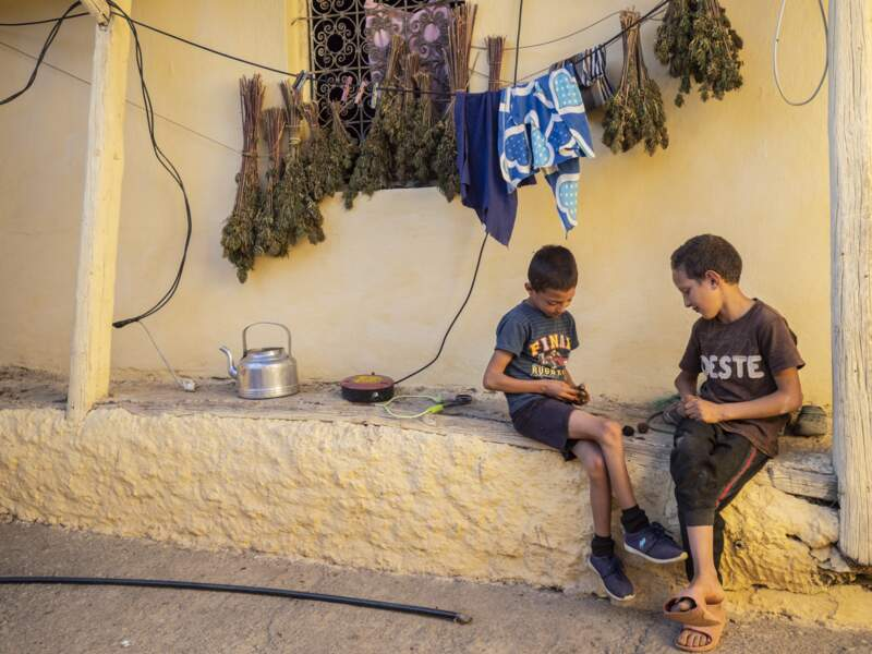 Les bouquets de cannabis côtoient les enfants