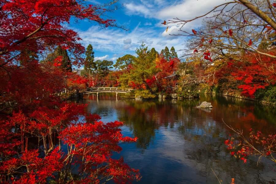 L'automne à Kyoto